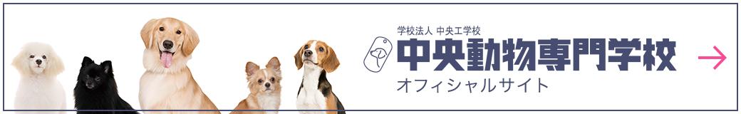 中央動物専門学校オフィシャルサイト